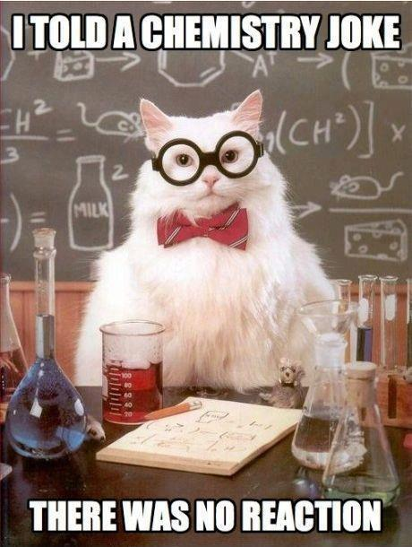 chemistry joke no reaction cat