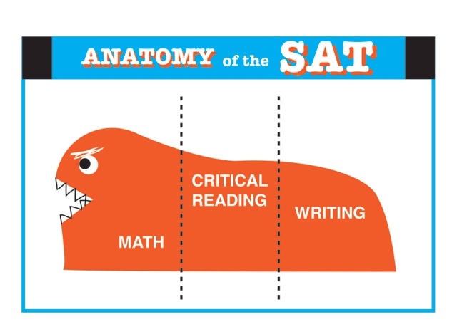 anatomy of the sat monster