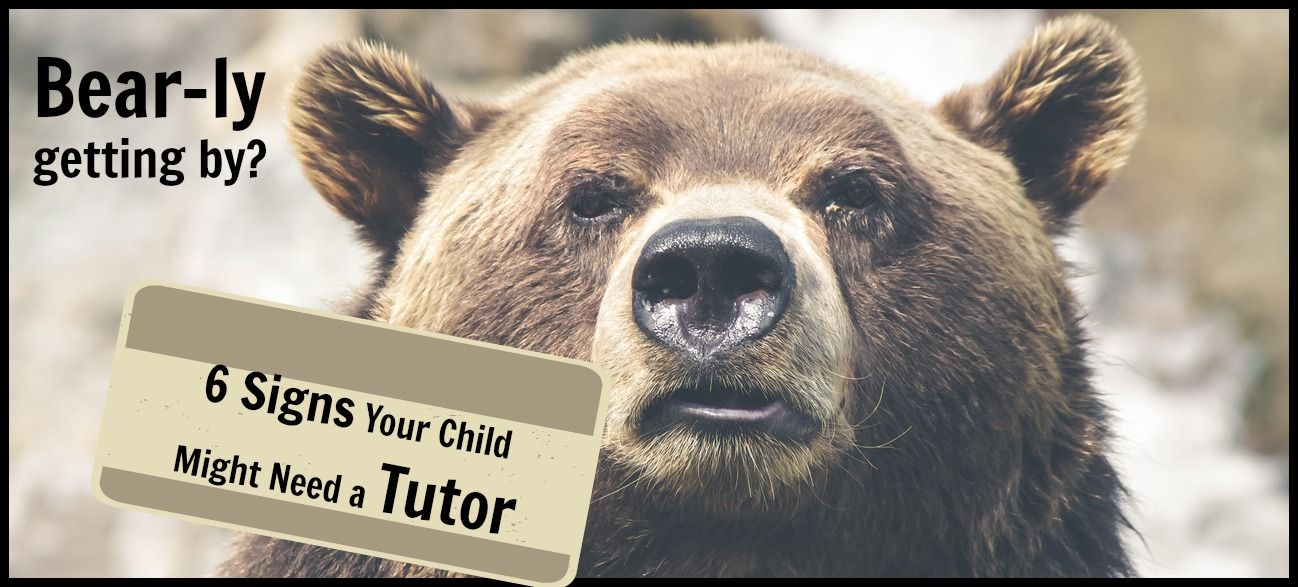 does my child need a tutor