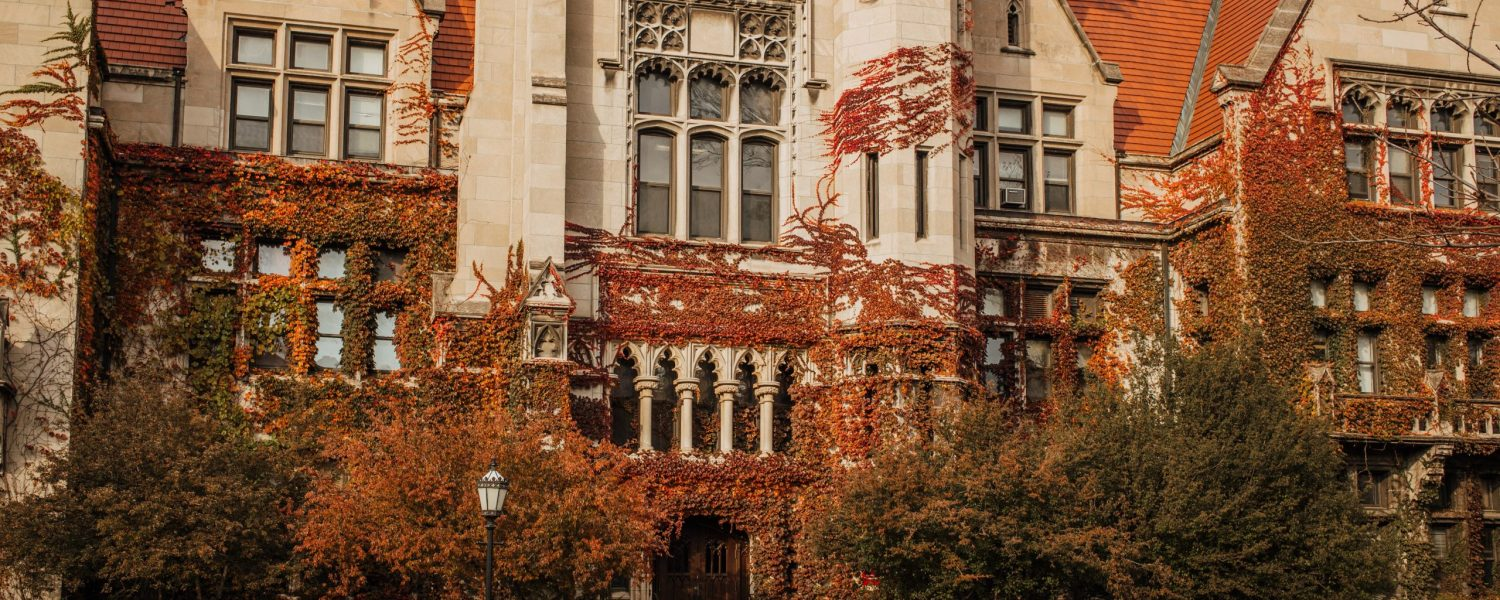 university of Chicago requirements