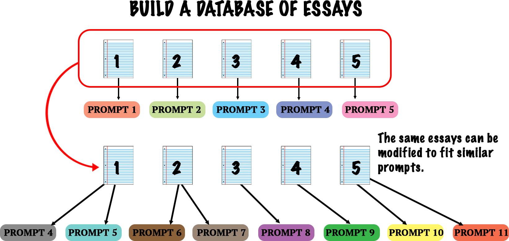 essay-database