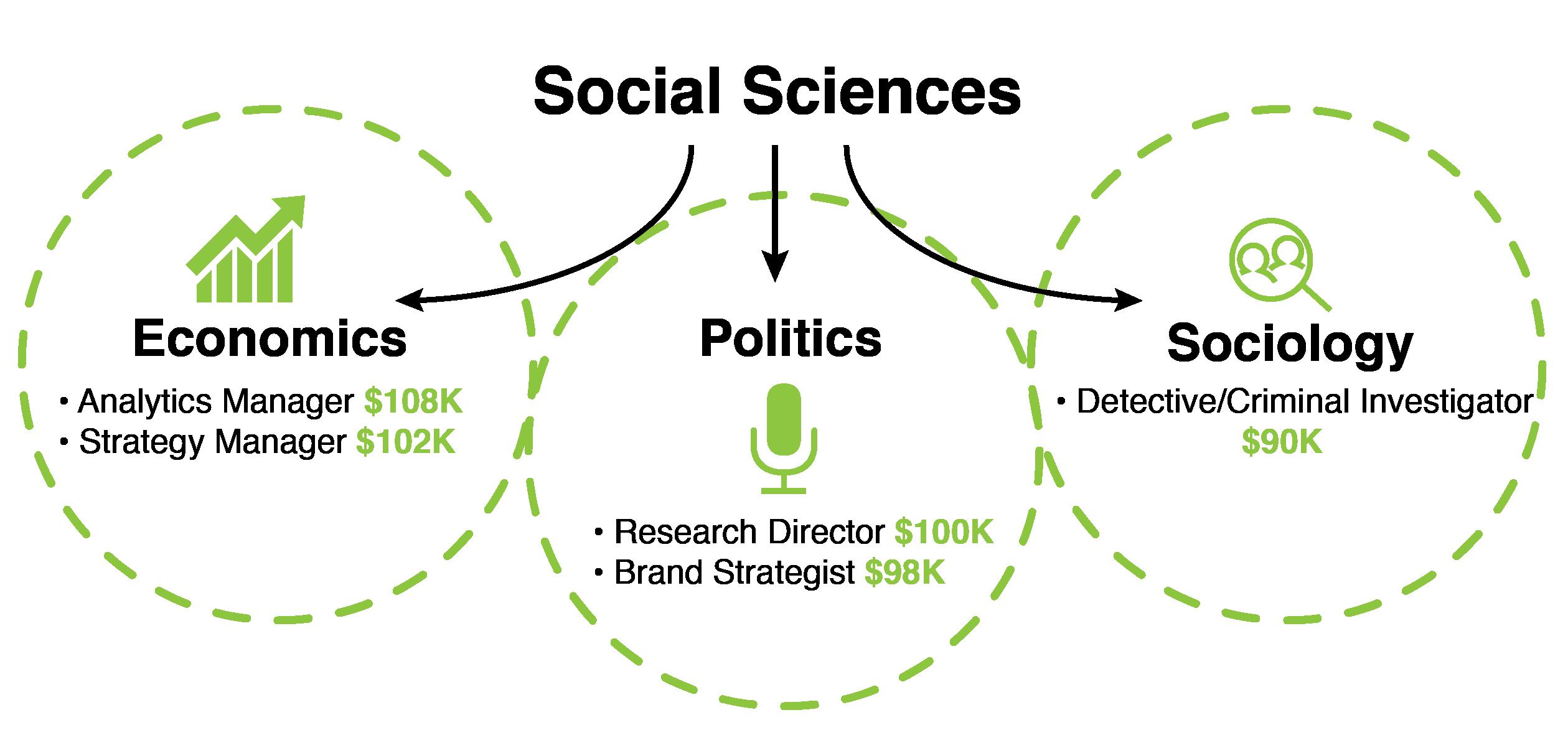social sciences major options-01